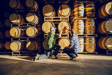 Caucasian men examining barrel in distillery