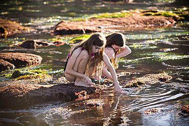 Crouching Caucasian girls exploring tide pools