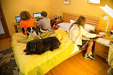 Children on bed using laptops