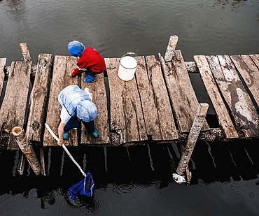 Boys playing on wooden dock