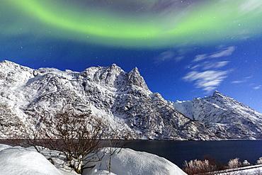 Northern Lights (aurora borealis) illuminate the snowy peaks and the blue sky during a starry night, Budalen, Svolvaer, Lofoten Islands, Arctic, Norway, Scandinavia, Europe