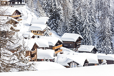 The snowy woods frame the typical mountain huts, Bettmeralp, district of Raron, canton of Valais, Switzerland, Europe