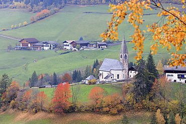 The yellow leaves of a larch frame the alpine church in the fall, St. Magdalena, Funes Valley, South Tyrol, Dolomites, Italy, Europe