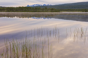 Pink clouds of the midnight sun reflected in the clear water of a swamp, Bogen, Evenes, Ofotfjorden, Nordland, Norway, Scandinavia, Europe