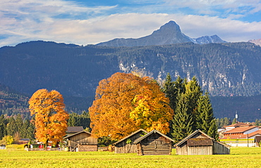 Wooden huts surrounded by colorful trees in autumn, Garmisch Partenkirchen, Upper Bavaria, Germany, Europe