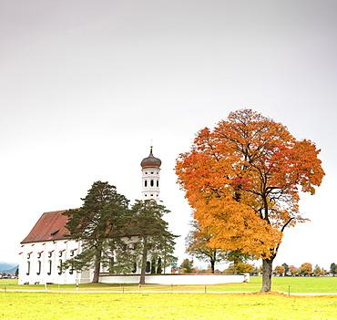 Autumn colors and trees surround St. Coloman Church at sunrise, Schwangau, Bavaria, Germany, Europe