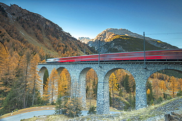 Red train on viaduct surrounded by colorful woods, Preda, Bergun, Albula Valley, Canton of Graubunden, Engadine, Switzerland, Europe