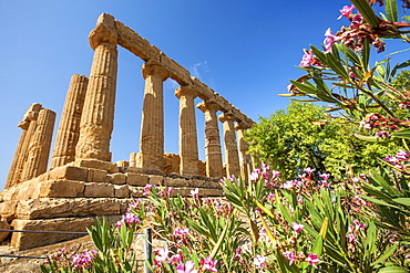 The Temple of Juno, a Greek temple of the ancient city of Akragas located in the Valle dei Templi, UNESCO World Heritage Site, Agrigento, Sicily, Italy, Europe