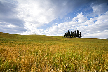 Clouds frame the gentle green hills of Val d'Orcia, UNESCO World Heritage Site, Province of Siena, Tuscany, Italy, Europe