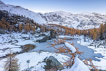 Red larches frame the frozen Lake Mufule, Malenco Valley, Province of Sondrio, Valtellina, Lombardy, Italy, Europe
