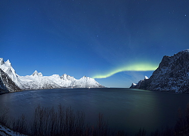 Panorama of the Northern Lights on the Senjahopen peak surrounded by the frozen sea, Senja, Mefjordbotn, Troms county, Norway, Scandinavia, Europe