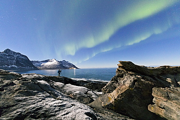 Photographer under the stars and Northern Lights (aurora borealis) surrounded by rocky peaks and icy sea, Tungeneset, Senja, Troms, Norway, Scandinavia, Europe