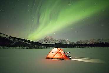 Photographer in a tent lit up by Northern Lights (aurora borealis) and starry sky in the polar night, Svensby, Lyngen Alps, Troms, Norway, Scandinavia, Europe
