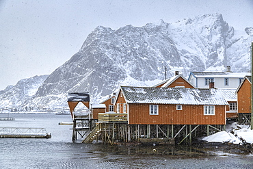 A violent and sudden snowstorm begins to fall in the Bay of Hamnoy famous for Rorbu cottages in the Lofoten Islands, Hamnoy, Lofoten Islands, Arctic, Norway, Scandinavia, Europe