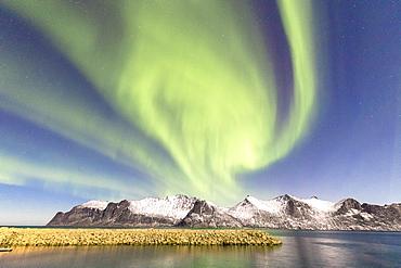 Northern lights (aurora borealis) on snowy peaks and icy sea along Mefjorden seen from the village of Mefjordvaer, Senja, Troms, Norway, Scandinavia, Europe