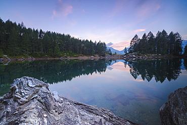 Trees reflected in Lago Azzurro under pink sky at dawn, Motta Madesimo, Spluga Valley, Sondrio, Valtellina, Lombardy, Italy, Europe