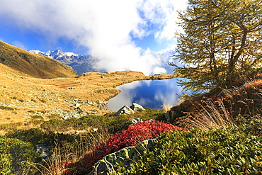 Clouds on peaks of Bernina Group reflected in Lake Arcoglio, Val Torreggio, Malenco Valley, Valtellina, Lombardy, Italy, Europe
