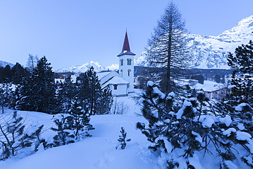 Blue lights of dusk on Chiesa Bianca framed by snowy trees, Maloja Pass, Engadine, Canton of Graubunden, Switzerland, Europe