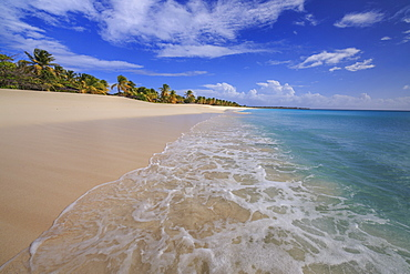 The deserted beach of K-Club, located not far from the village, closed since 2004, Barbuda, Antigua and Barbuda, Leeward Islands, West Indies, Caribbean, Central America