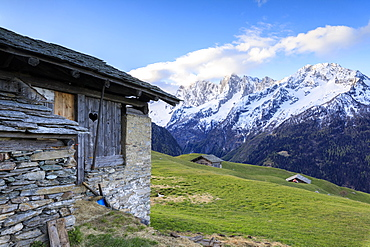 Alpine hut framed by meadows and snowy peaks at dawn, Tombal, Soglio, Bregaglia Valley, canton of Graubunden, Switzerland, Europe