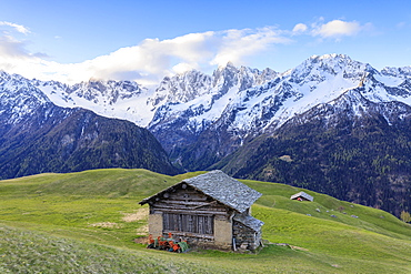 Meadows and wooden huts framed by snowy peaks at dawn, Tombal, Soglio, Bregaglia Valley, canton of Graubunden, Switzerland, Europe