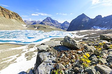 Lej Lagrev during the thaw with Piz Polatschin on the background St. Moritz, Engadine, Canton of Graubunden, Switzerland, Europe