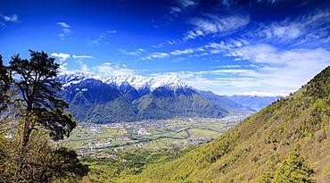 Panoramic of Rhaetian Alps in spring from Prati Nestrelli, Civo, province of Sondrio, Valtellina, Lombardy, Italy, Europe