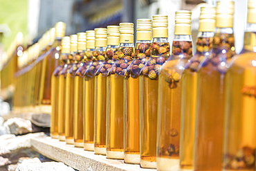 Details of bottles of grappa, a typical liquor, San Romerio Alp, Brusio, Canton of Graubunden, Poschiavo Valley, Switzerland, Europe