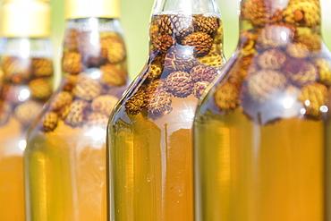 Detail of bottles of grappa, a typical liquor, San Romerio Alp, Brusio, Canton of Graubunden, Poschiavo Valley, Switzerland, Europe