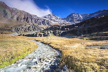 Creek flowing between meadows, Alpe Fora, Malenco Valley, province of Sondrio, Valtellina, Lombardy, Italy, EuropeCreek flowing between meadows, Alpe Fora, Malenco Valley, province of Sondrio, Valtellina, Lombardy, Italy, Europe