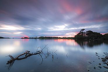 Lough Leane lake, Killarney National Park, County Kerry, Munster, Republic of Ireland, Europe