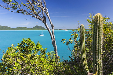 Panoramic view of Spearn Bay from a hill overlooking the quiet lagoon visited by many sailboats, St. Johns, Antigua, Leeward Islands, West Indies, Caribbean, Central America