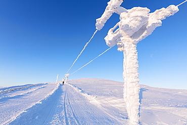 Hiker walks on frozen path, Pallas-Yllastunturi National Park, Muonio, Lapland, Finland, Europe
