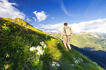 Hiker walks towards Monte Azzarini with Bergamo Orobie Alps in the background, San Marco Pass, Orobie Alps, Lombardy, Italy, Europe