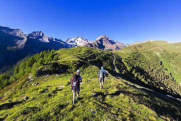 Hikers walk towards Monte Disgrazia from Scermendone Alp, Sondrio province, Valtellina, Rhaetian Alps, Lombardy, Italy, Europe