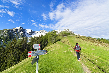 Hiker on footpath, Motta di Olano, Valgerola, Valtellina, Sondrio province, Lombardy, Italy, Europe