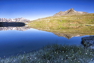 Mountain peaks reflected in Lago Bianco, Gavia Pass, Valfurva, Valtellina, province of Sondrio, Lombardy, Italy, Europe