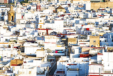 View from Torre Tavira of white houses in Cadiz, Spain, Europe