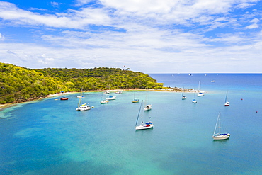 Sailboats and catamarans moored in a tropical bay, aerial view by drone, Caribbean Sea, Antilles, West Indies, Caribbean, Central America