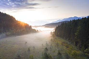 Sun rays at sunrise on fog covering the wetland of Pian di Gembro Reserve, aerial view, Aprica, Valtellina, Lombardy, Italy, Europe