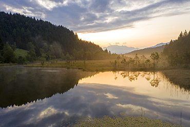 Aerial view of the misty sunrise over swamp of Pian di Gembro Nature Reserve, Aprica, Sondrio, Valtellina, Lombardy, Italy, Europe
