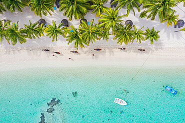 Tourists riding horses on palm-fringed beach, aerial view, Le Morne Brabant peninsula, Black River, Mauritius, Indian Ocean, Africa