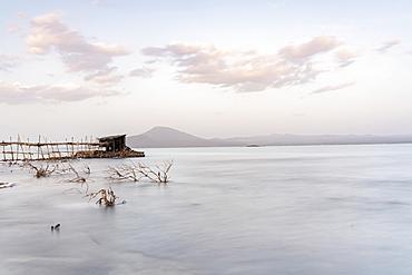 Lake Afrera (Lake Afdera), Danakil Depression, Afar Region, Ethiopia, Africa