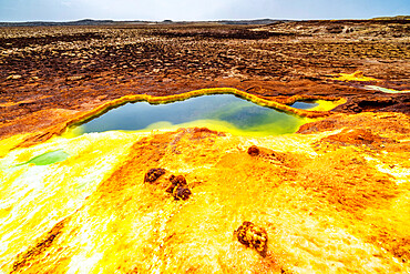 Sulphur acid hot springs, Dallol, Danakil Depression, Afar Region, Ethiopia, Africa