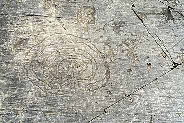Rupestrian engravings depicting labyrinth and warriors, Naquane National Park, Capo di Ponte, Valcamonica (Val Camonica), Brescia province, Lombardy, Italy, Europe