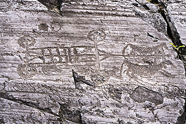 Rock engraving of four wheeled cart pulled by oxen, Naquane National Park, Capo di Ponte, Valcamonica (Val Camonica), Brescia province, Lombardy, Italy, Europe