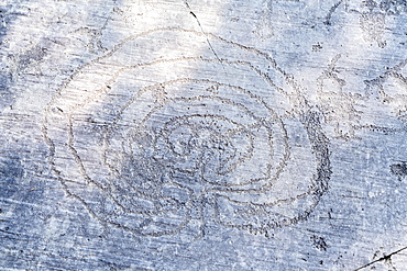 The labyrinth theme carved on majestic Rock 1, Naquane National Park of Rupestrian Engravings, Valcamonica (Val Camonica), Brescia province, Lombardy, Italy, Europe