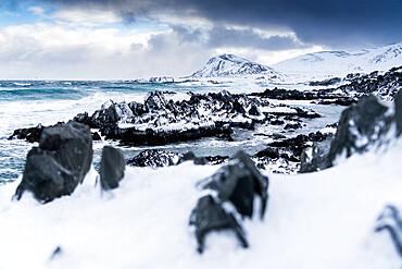 Cliffs covered with snow on coastline of the cold Barents Sea, Sandfjorden, Arctic Ocean, Varanger Peninsula, Finnmark, Norway, Scandinavia, Europe