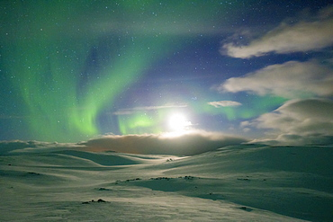 Snowy landscape lit by moon in the starry sky during the Northern Lights (Aurora Borealis), Skarsvag, Nordkapp, Troms og Finnmark, Norway, Scandinavia, Europe