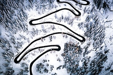 Aerial view of cars on narrow bends of mountain road crossing the snowy forest, Switzerland, Europe